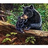 dedepeng 5d - Kit de pintura de diamantes para decoración de pared (12 x 16 cm), diseño de oso negro