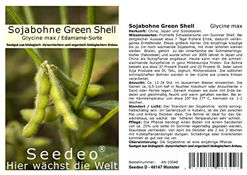 Seedeo® Sojabohne Green Shell (Glycine max) ca. 30 Samen BIO