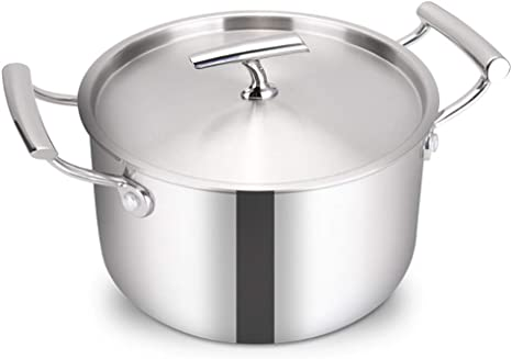 22cm 8in Multipurpose Stainless Steel Stockpot with Glass Lid and Duo Handle