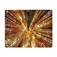 iPad Air 4 ケース 2020 iPad 10.9インチ 森の家の装飾、大きな高いブナの木落葉性の脱落カナダのカエデ牧歌的なプリント、オレンジブラウン Pad 10.9インチ 2020年専用