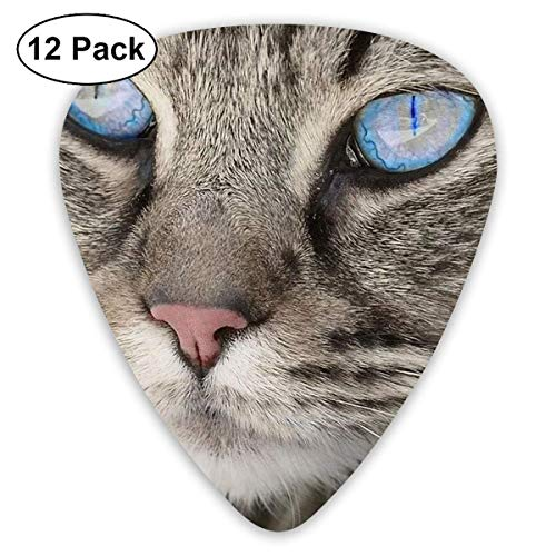 12 Pack Guitar Picks Blue Eyes Cat Design,For Unique Guitar Bass Electric & Acoustic Guitars,Different Thin 0.46Mm 0.71Mm 0.96Mm