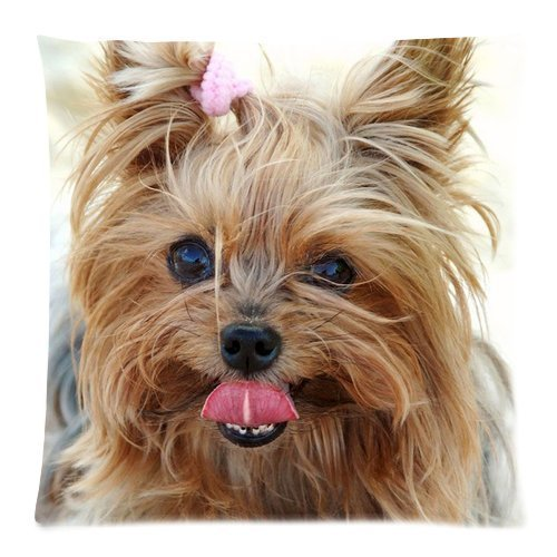 Wholesale Soft Cotton Pillowcase Print Cute Pet Doggy Yorkshire Terrier Diy Decorative Cushion Covers 2 Sides 18 X 18-1