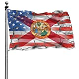 Florida Flag American Flag 4x6 Feet - Vivid Color and UV Fade Resistant - Canvas Header and Double Stitched - with Brass Grommets