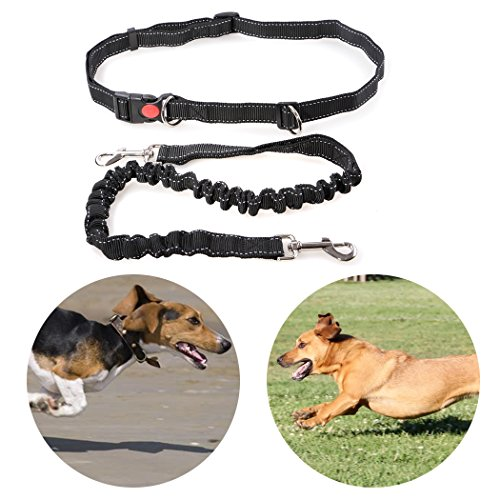 Dog Leash Running Hands Free Dog Leash Retractable Bungee Belt Perfect for Small Medium Large Dogs Walking Training Hiking Adjustable Waist Belt Safe Pet Leash Collar Harness Supplies Pet Leashes