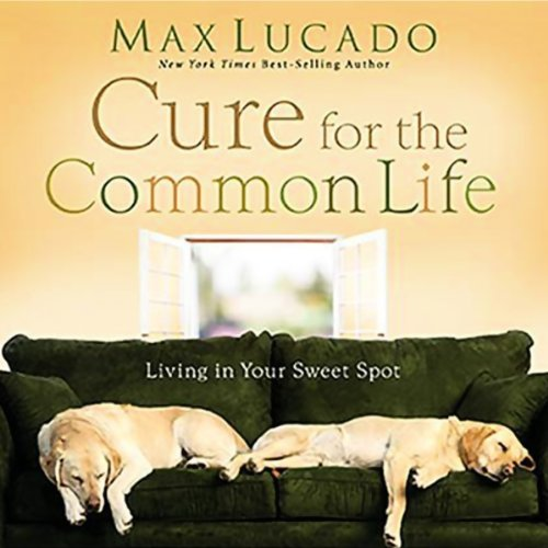 The Cure for the Common Life audiobook cover art