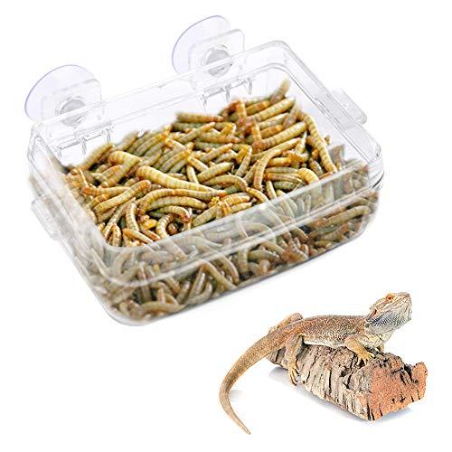 HEEPDD Alimentador de Reptiles, Anfibios Reptiles Alimentador Anti-Escape Lavabo de alimentación de lombrices Transparente con Ventosa para Serpientes Gecko Iguana de lagartijas de camaleón