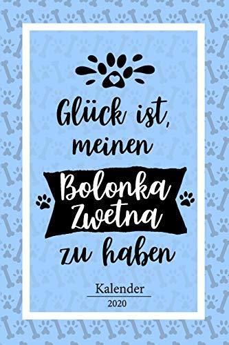 Bolonka Zwetna Kalender 2020: Geschenk Wochenplaner,Terminkalender 2020 für Hundebesitzer, Frauchen...