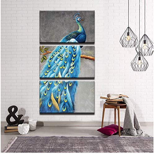 BGGGTD Poster Canvas Paintings Watercolor Abstract Peacock Prints Pictures Posters Wall Art for Living Room Home Decor -40x60x3 No Frame