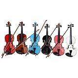 GLARRY 4/4 Full Size Acoustic Violin (Violin + Case + Bow + Rosin) - Random Color