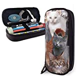 XCNGG Trop de chat sac à crayons en cuir à motif de mode personnalisé, étui à crayons avec pochette à crayons avec double boîte de support à glissière pour l'école adolescente garçons (8x3.5x1.5inch)