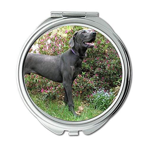 Yanteng Spiegel, Reise-Spiegel, Alaska Malamute Dog Dog Dog, Taschenspiegel, 1 X 2X Lupe