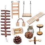 Magiin 10 Pcs Jouets à Mâcher pour Hamster Rats Lapins, Jouets de Hamster Bois pour Petits Animaux Soins des Dents Molaire