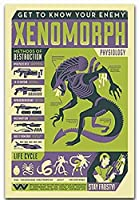 KYASDP エイリアンゼノモルフ生理学チャートクラシックムービーアートポスタープリントキャンバス家の装飾画像壁-50X70Cmフレームなし