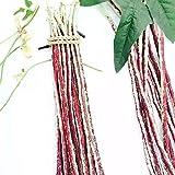 semi di fagioli lunghi da cortile (vigna unguiculata) semi di vite biologica asparagi fagioli secchi fagioli freschi facili da coltivare premium ortaggi a resa elevata piante