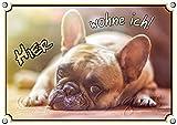 Petsigns Hundeschild - Französische Bulldogge - DIN A5 thumbnail