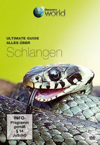 Ultimate Guide - Alles über Schlangen