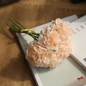 Artificial Flowers Silk Peony for Home Wedding Decoration 5 Heads Hydrangea Small Bouquet Fall Decor Fake,champagne