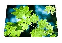 26cmx21cm マウスパッド (カエデの葉ブランチ夏フォワードキャプティブグリーン) パターンカスタムの マウスパッド