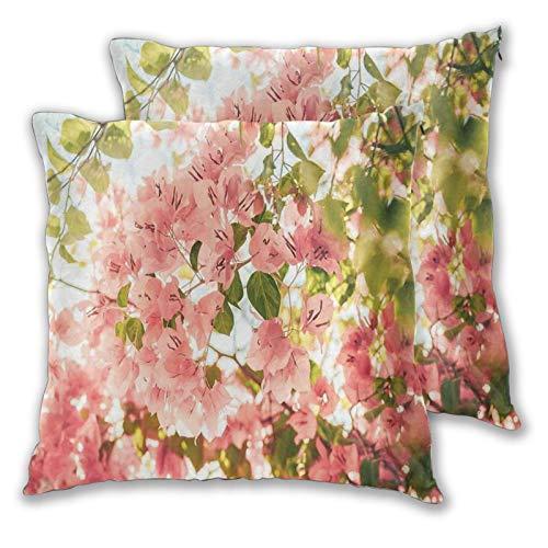 FULIYA 2 fundas de almohada decorativas de buganvilla, ramas de flores en verano soleado con vistas al parque natural, decoración del hogar cuadrada de 50 x 50 cm