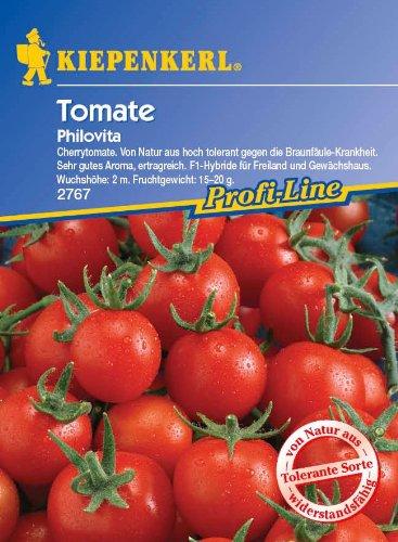 Tomaten Philovita F1