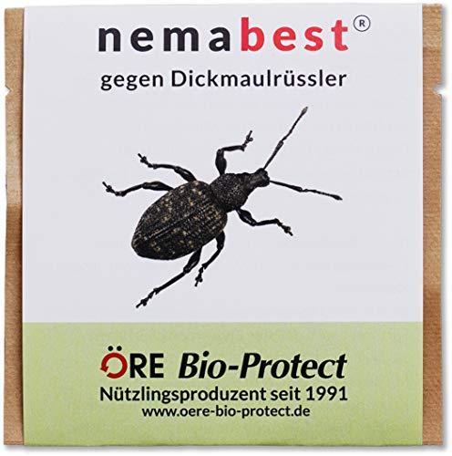 nemabest® HB Nematoden zur Bekämpfung des Dickmaulrüsslers - 25 Mio. für 50m²