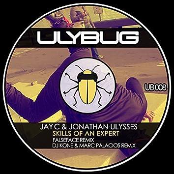 Skills of an Expert (Remixes)