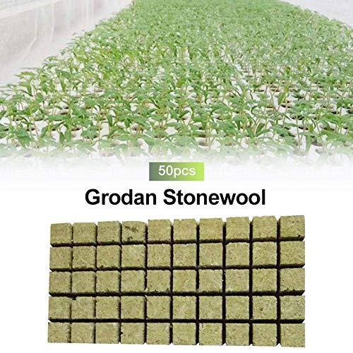 HTYG 50pcs Rockwool Cubes Hydroponics, para Cultivo hidropónico de Semillas de propagación de Semillas de Roca hidropónica, el Crecimiento vigoroso de Las Plantas (36×36×40mm)