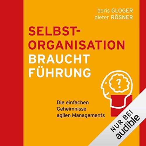 Selbstorganisation braucht Führung audiobook cover art