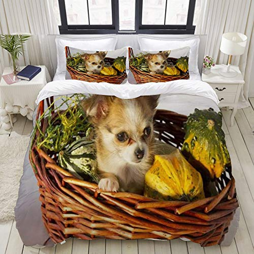 XiHi Duvet Cover Set, Bed Sheets,Chihuahua Puppy in Wicker Funny Basket Ornamental Animals Wildlife Holidays,1 Duvet Cover Set 240 x 260 cm,+2 pillowcase 50x80cm