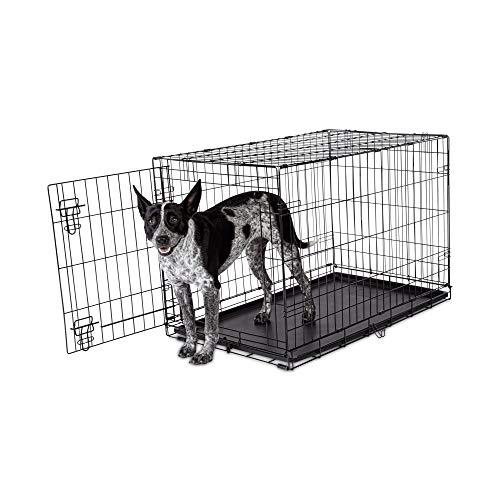 Petco Brand - Animaze 1-Door Folding Dog Crate, 36.5