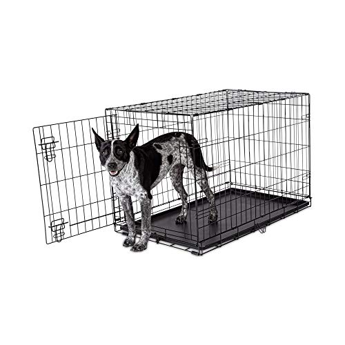 Petco Brand - Animaze 1-Door Folding Dog Crate, 36.5' L x 23.2' W x 24.7' H, Large, Black
