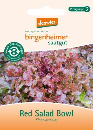 Bingenheimer Saatgut - Pflücksalat Eichblattsalat Red Salad Bowl - Gemüse Saatgut / Samen