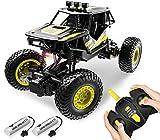 DoDoeleph Ferngesteuertes Auto RC Car Crawler Geländewagen Off Road Fahrzeug 4WD Monster Truck Rock für Innenbereich/ Außenbereich Geschenk Kinder