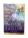 dsnetz Natural Fantasma de Orakel Orakel Tarjetas 50Tarjetas Libro Acompañamiento   Ritual Altar Accesorios   Esoterik Regalos Günstig Online Comprar