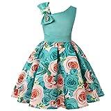 Moent Vestido y falda para niñas, vestido floral para dama de honor, vestido de fiesta de cumpleaños, vestido de boda, vestido de niña de flores para bodas (azul claro-3-4 años)