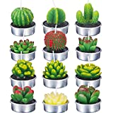 TecUnite 12 Pieces Cactus Tealight Candles Handmade Delicate Succulent Cactus Candles for Party Wedding Spa Home Decoration Gifts (Style B)
