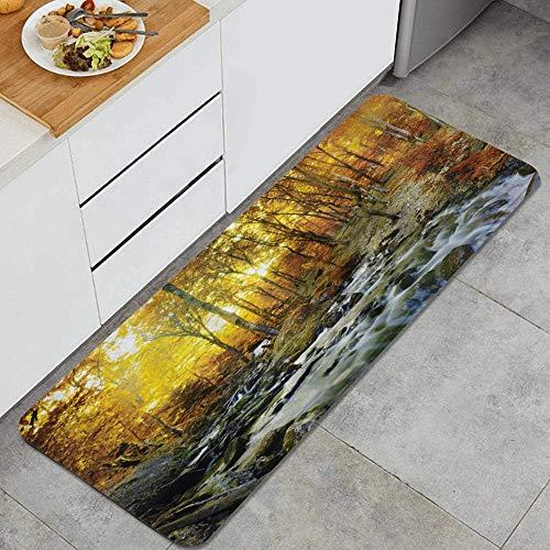 MJIAX Alfombra de Cocina,Casa del Lago Tiempo de otoño River Creek Bos, Alfombra Antideslizante con Respaldo para Alfombra de Cocina, tapete, tapete, 47.2 x 17.7 Pulgadas
