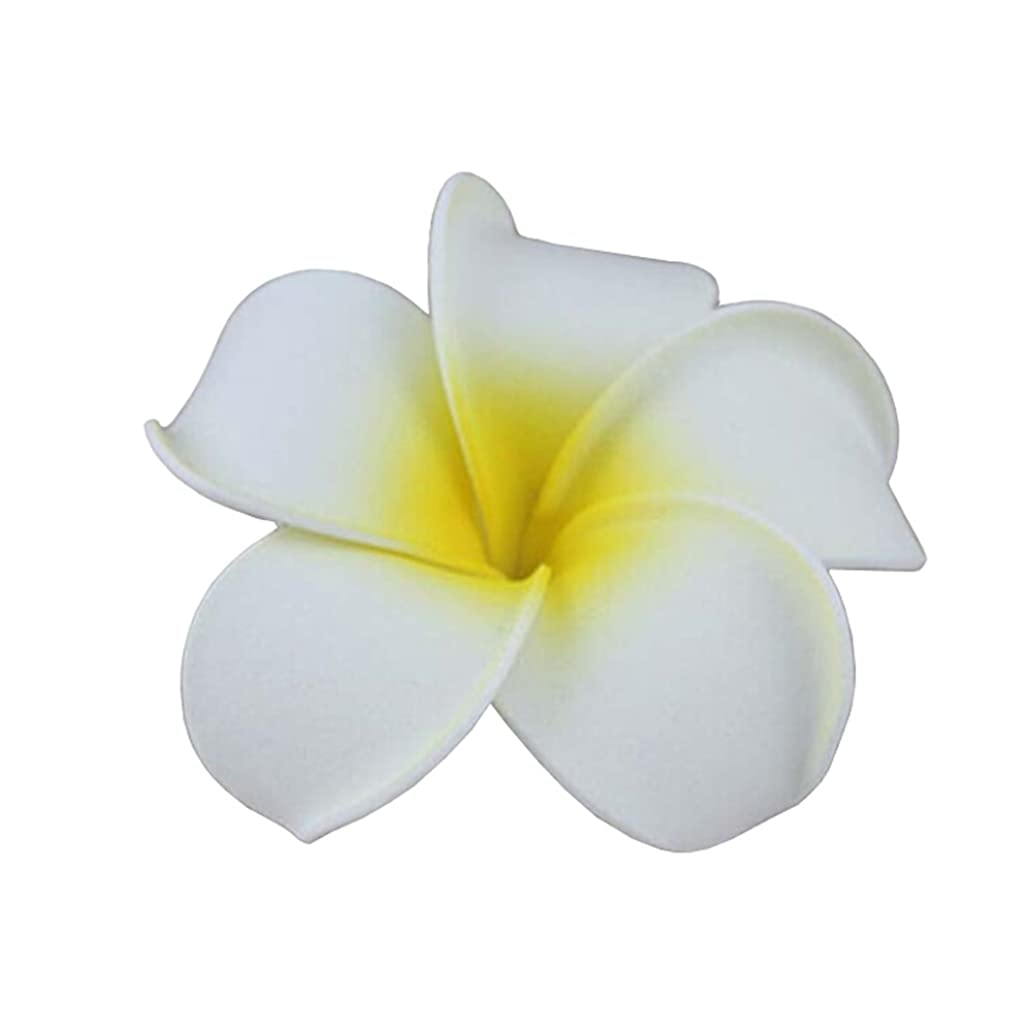 Tonwhar 20 Pcs Hawaiian Plumeria Flower Foam Hair Clip Accessory for Beach