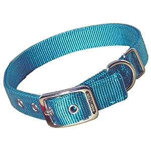 Hamilton Double Thick Nylon Deluxe Dog Collar, 1-Inch by 20-Inch, Teal