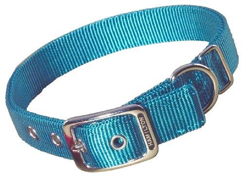 Hamilton - Collar de Nailon Doble Grueso para Perro, 2,5 x 50,8 cm, Color Verde Azulado