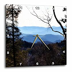 3dRose A Mountain Scene from on Top of The Smokey Mountains - Wall Clock, 10 by 10-Inch (DPP_172315_1)