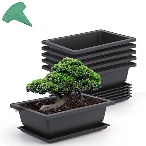 GROWNEER 6 Packs 9 Inches Bonsai Training Pots with 15 Pcs Plant Labels, Plastic Bonsai Plants Growing Pot for Garden, Yard, Office, Living Room, Balcony and More