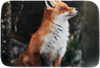 EGGDIOQ Doormats Beautiful Red Fox Custom Print Bathroom Mat Waterproof Fabric Kitchen Entrance Rug, 23.6 x 15.7in