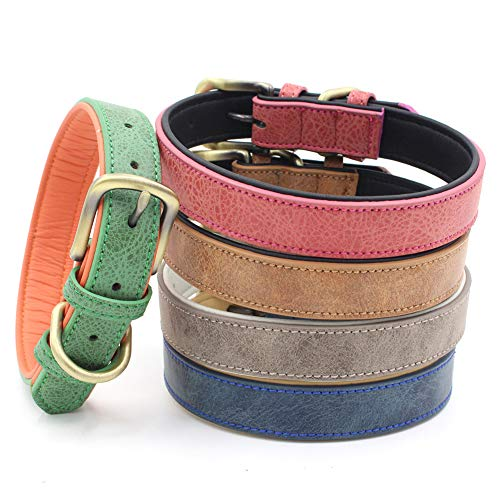 Blackzone Pet Dog Kitten Adjustable Collar Soft Buckle Outdoor Training Safe Neck Strap,As The Best Gift for Your Lovely Pet. Grey XS