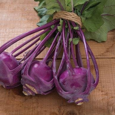 Azur-Star Kohlrabi Seeds (Brassica oleracea var. gongylodes) 20+ Rare Seeds + FREE Bonus 6 Variety Seed Pack - a $29.95 Value! Packed in FROZEN SEED CAPSULES for Growing Seeds Now or Saving Seeds