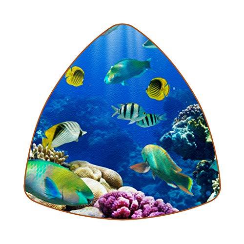 Tropical Fish On Coral Reef Juego de 6 Posavasos para Bebidas para...