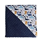 Messy Code Baby Blanket Super Soft Minky Plush Blanket with Double Layer Dotted Backing for Babies,Blue Dinosaur Printed Reversible Blanket 30x40 Inch
