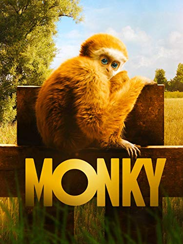 Monky - Kleiner Affe, großer Spass