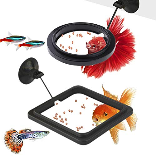 SunGrow Feeding Ring Set for Aquarium, One Square and One Round Floating Plate, Fish Food Stays Inside Frame, Easy Feeding, Lower Food Waste, Helps Keep Large Betta Tank Clean, Includes 2 Suction Cups