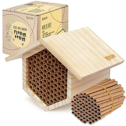 Rivajam Mason Bee House 2021 Design Wax Coated...